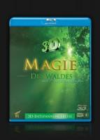 Magie des Waldes 3D