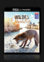 Wildes Venedig – Ultra HD